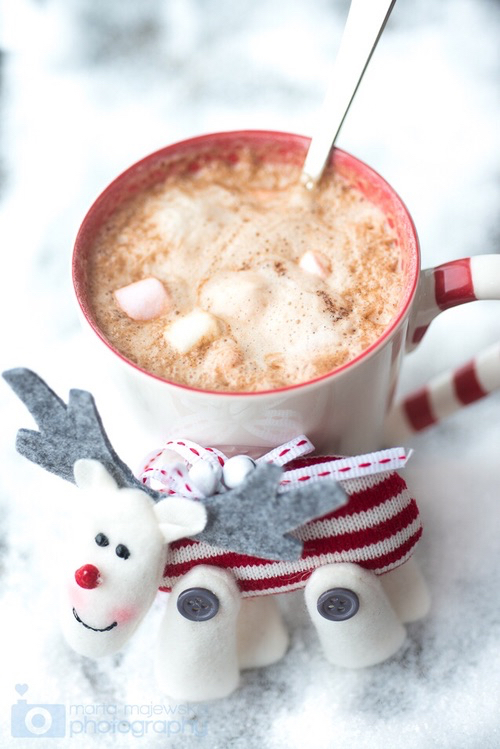 christmas, cocoa, cozy and drink