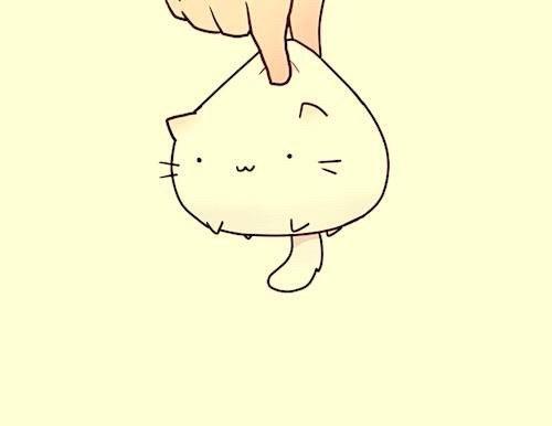 Fat Fat Cute Cat Image 2323217 By Lauralai On Favim Com