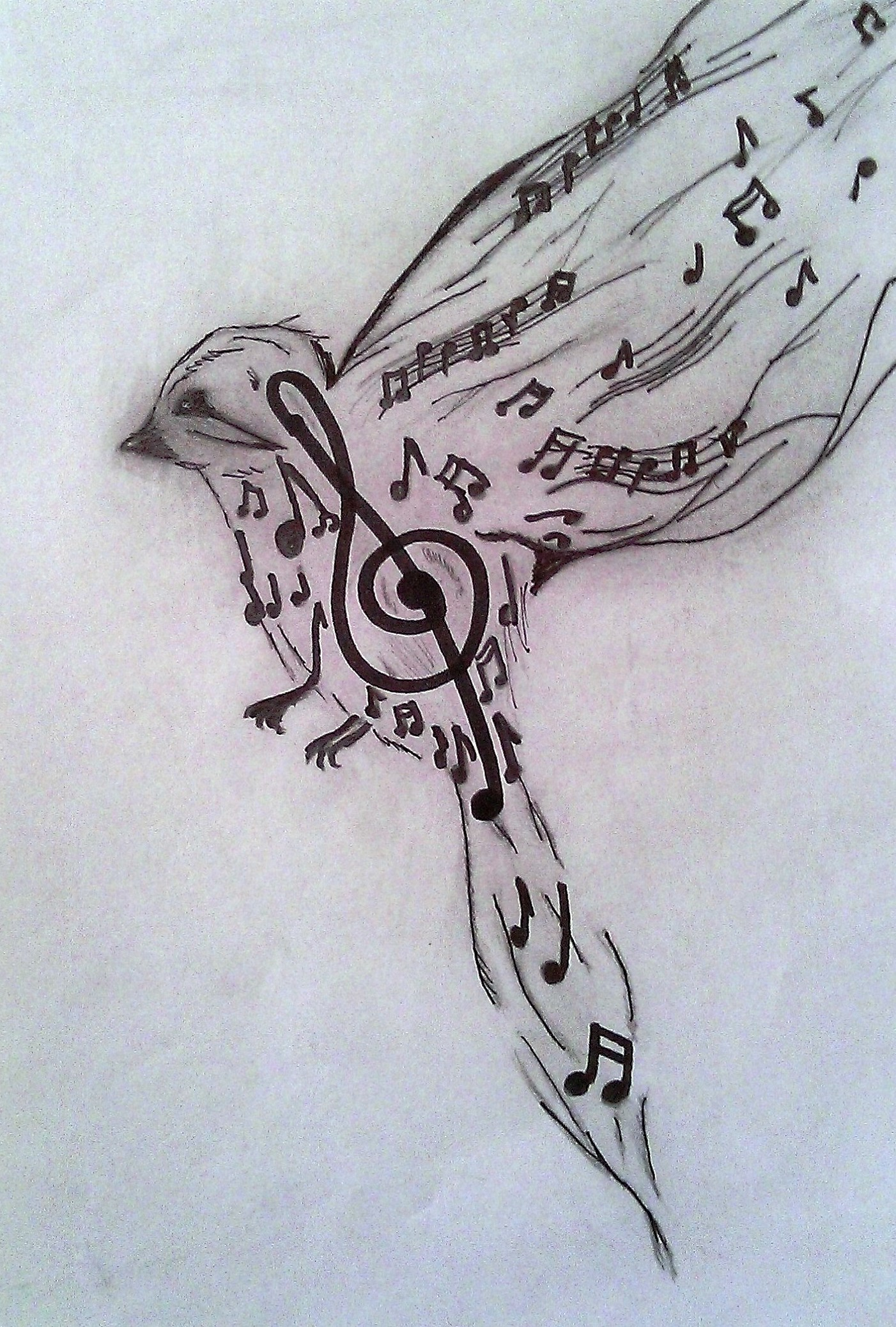 Art bird black clef draw drawings music pencil white