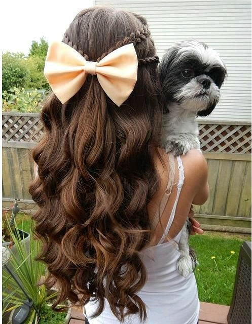 bow, braids, brown, curls, cute, hair, long, puppy