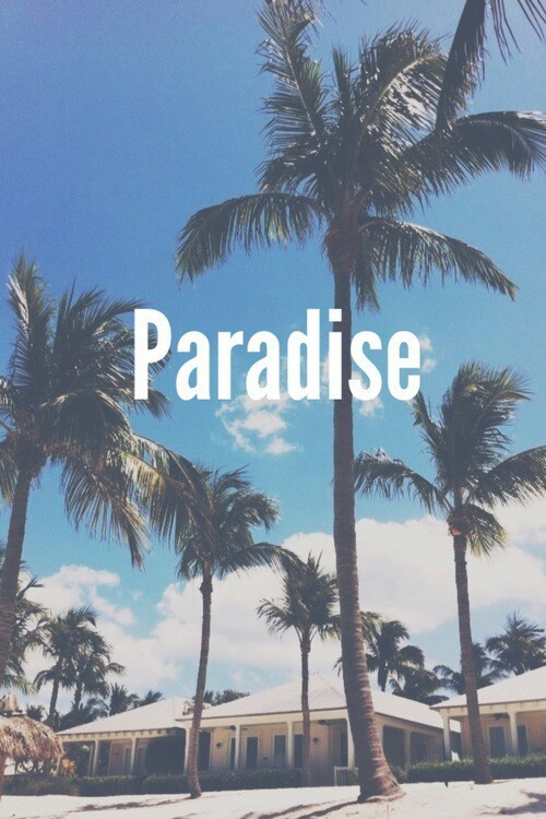 Paradise - image #2516787 by marky on Favim.com