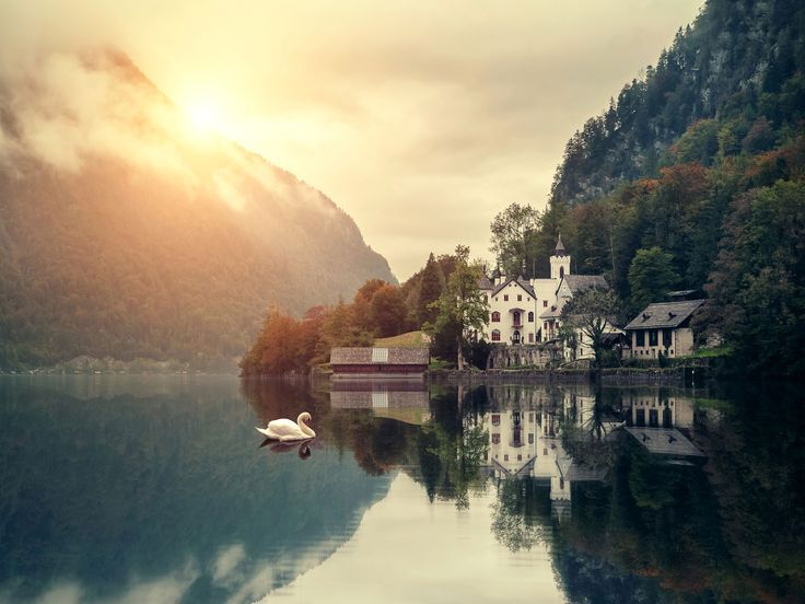 alps, architecture, austria, europe, fog, hallstatt, lake, mist, mountains, photography, reflections, swan, travel, trees, unesco, world heritage site, salzkammergut, hallstätter see, dachstein mountains