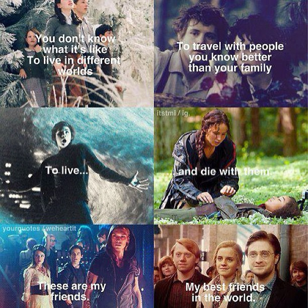 harry potter, percy jackson, the chronicles of narnia, the lord of the rings, the mortal instruments, the hunger gmes