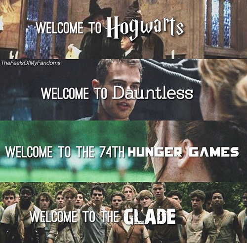 dauntless, glade, harry potter, hogwarts, the hunger games, glase