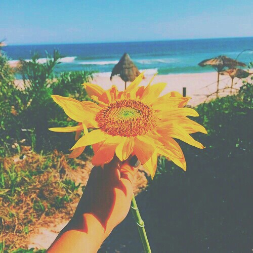 Filtered by pastelangel101 image 2892937 by winterkiss for Tumblr photography summer beach