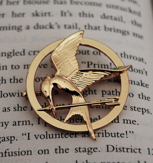 book, catching fire, district 12 and fandom