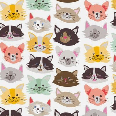 background, cat, cats, colors, funny, kitty, love, pattern, wallpaper