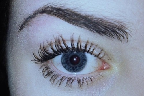 beauty, blue eyes, brows and dark