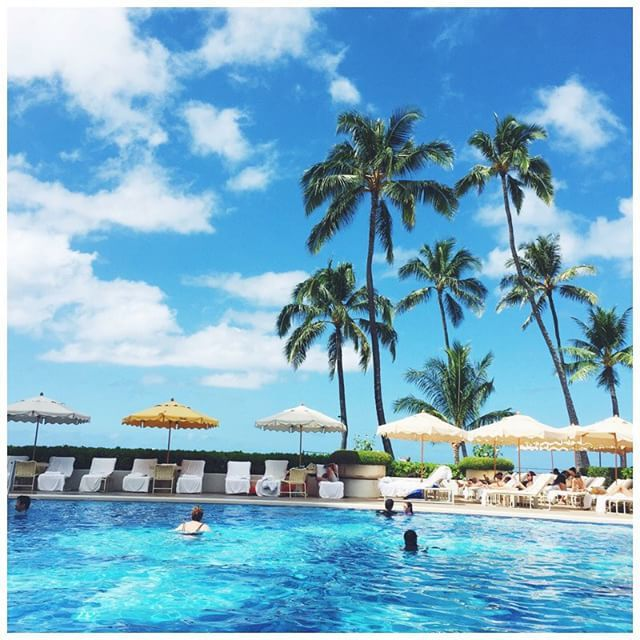 beach, hawaii, palm tree, paradise, pool, resort, sky, vacation