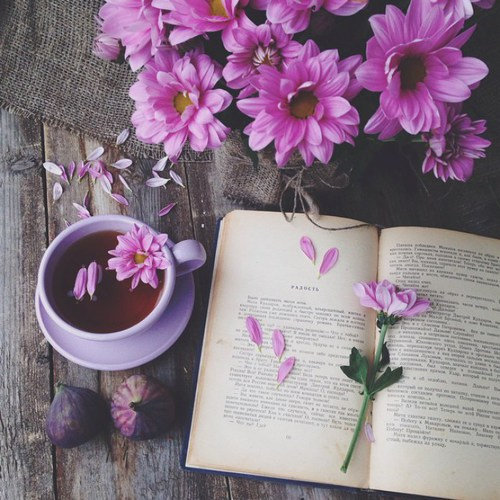 book, books, bookworm, coffee, flower, flowers, love, photography, pink, tea