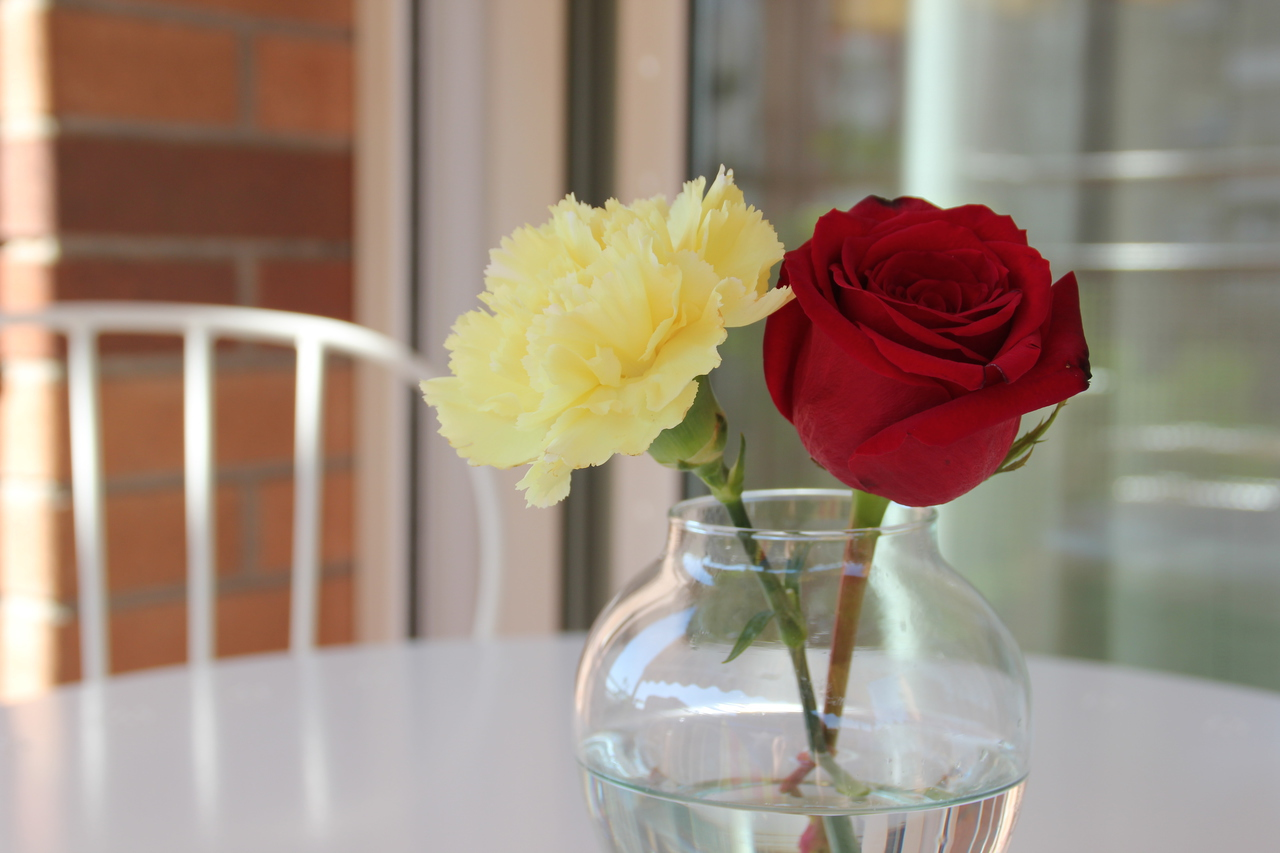 beautiful, flowers, inspire, light, red, relax, rose, summer, vase, yellow