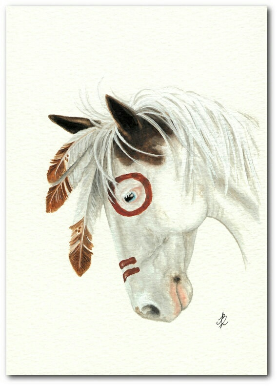 artist, creme, drawing, horse, indian, mustang, painting, white, amy lyn birhle