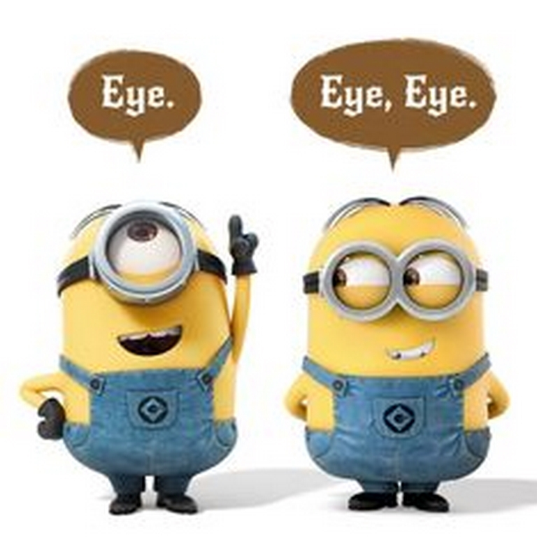 funny images, funny photos, funny pictures, funny quotes, minion, minions, minion quotes, funny minions