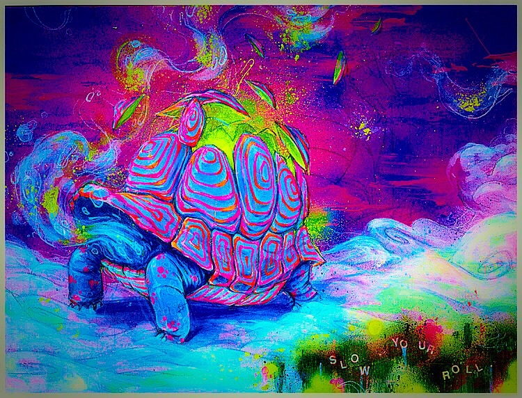 imagination, psychedelic, surreal, trippy, turtle