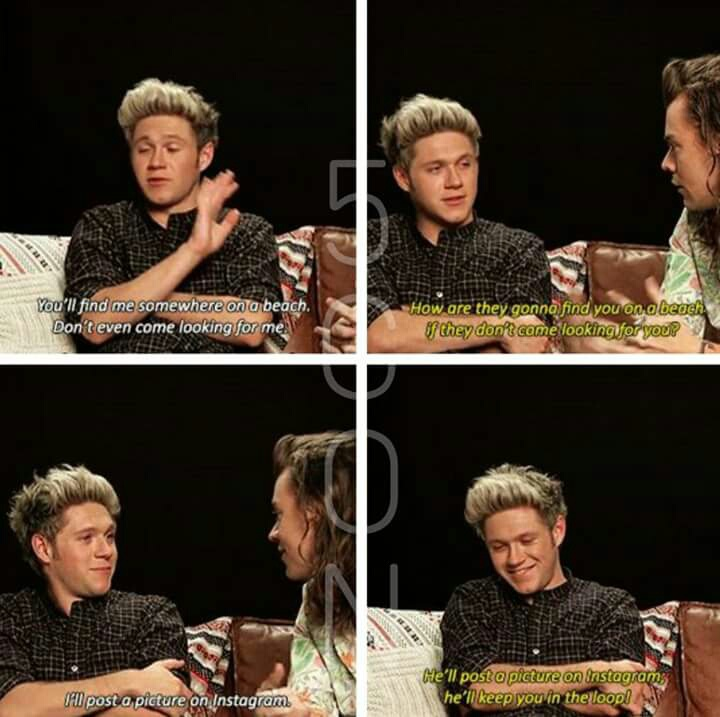funny, niall horan, one direction and harrystyles