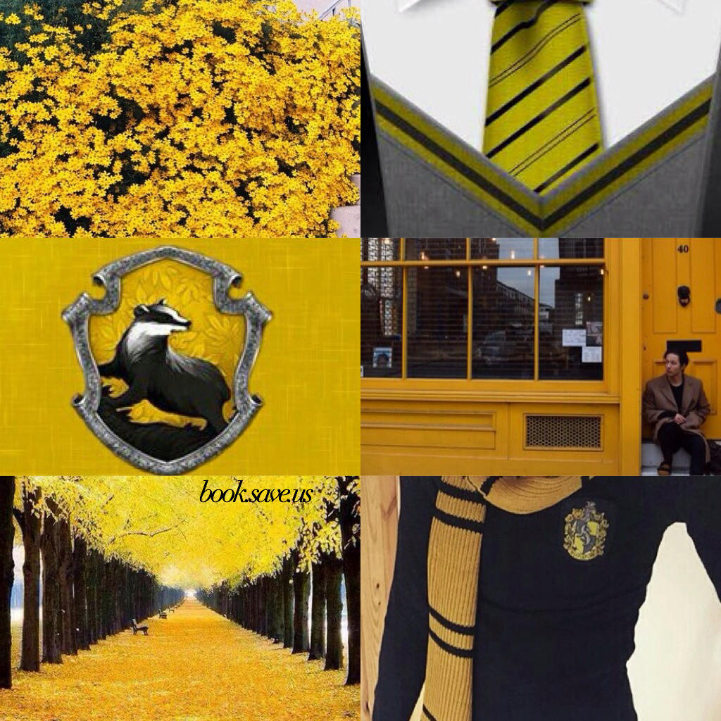 books, cedric diggory, edit and griffyndor