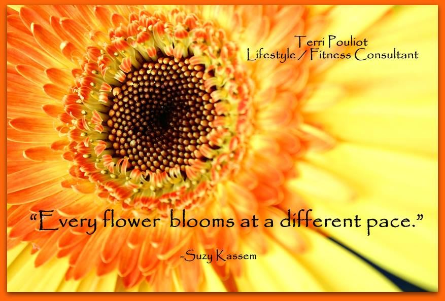 flower, flowers, life quotes and poems