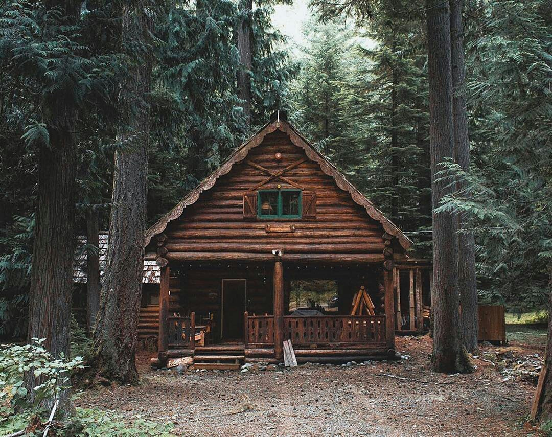 adventure, cabin, forest, hiking, woods