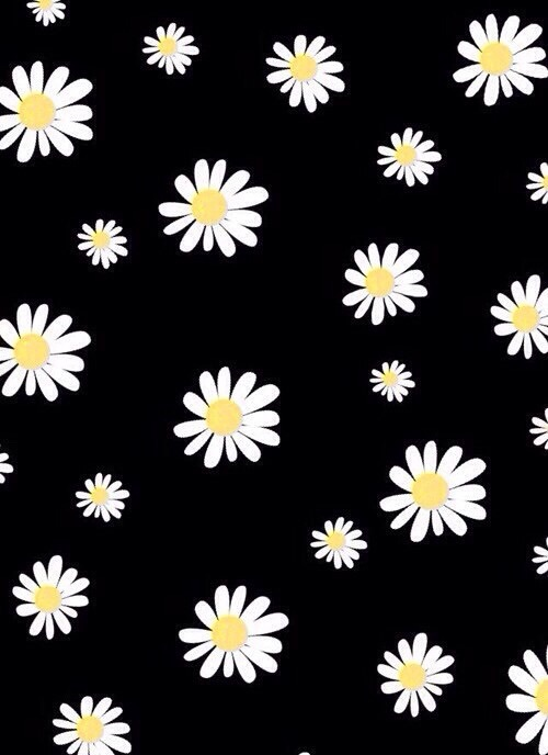 Cover Flowers Looking For Alaska Overlays Wallpaper